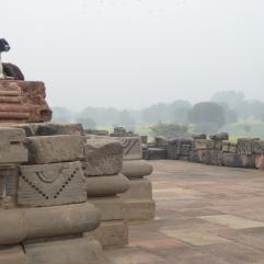 Trespassers! Abhaneri temple, Rajasthan