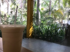 Cold coffee, greenery @CEPT campus