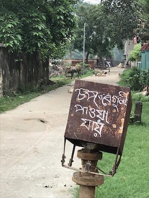 Signage for a 'chop' & 'beguni' shop