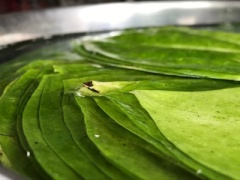 'Paan' or betel leaf is a big agricultural production in India