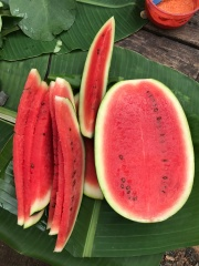 Fresh seasonal fruits sold here