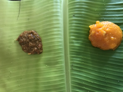 #recycle #ecofriendly #sustainable Banana leaf