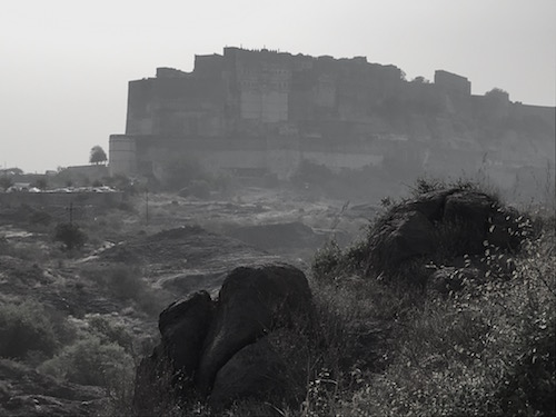 View of Mehrangarh Fort from the Park